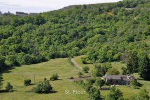 St. Fljour
