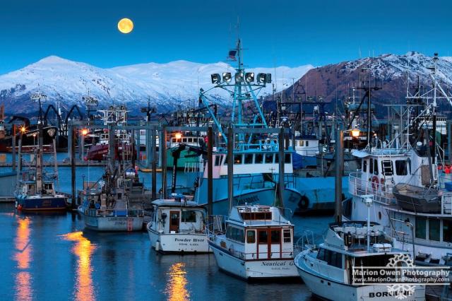 IMG-0783-moonset-harbor-alaska
