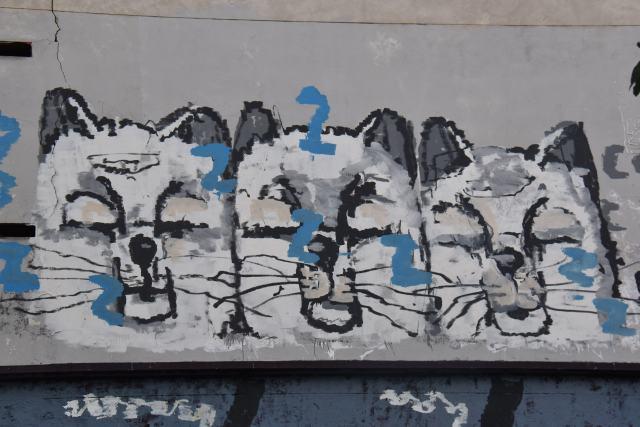chats taggées à Paris 10e